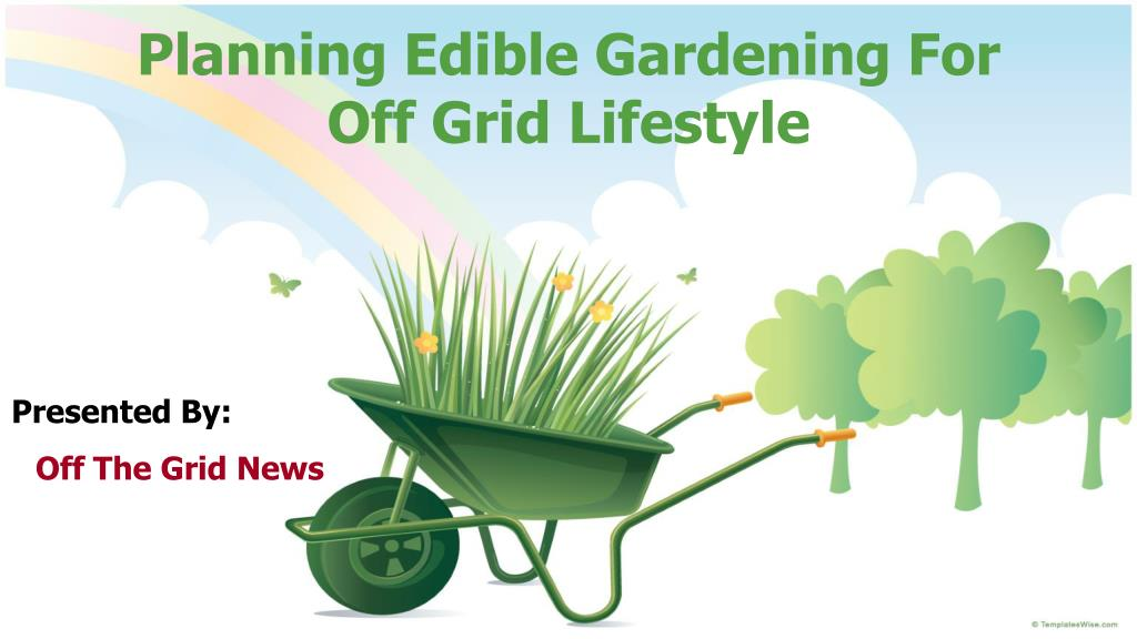 Planning Edible Gardening For Off Grid Lifestyle