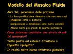 modello del mosaico fluido1