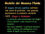 modello del mosaico fluido2