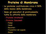 proteine di membrana