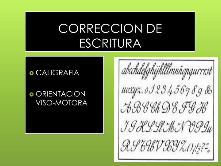 CORRECCION DE ESCRITURA