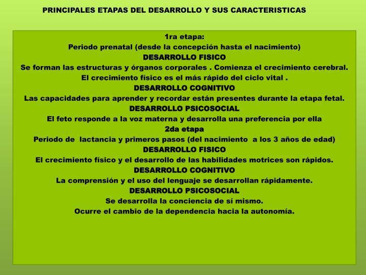 PRINCIPALES ETAPAS DEL DESARROLLO Y SUS CARACTERISTICAS