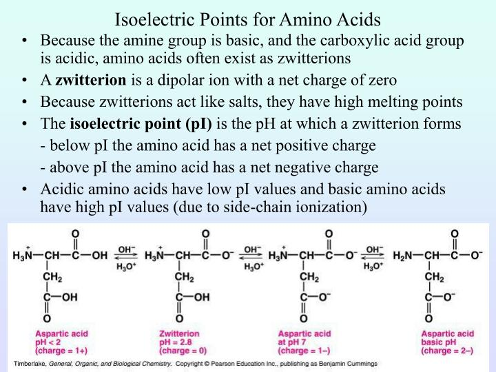 Isoelectric Points for Amino Acids