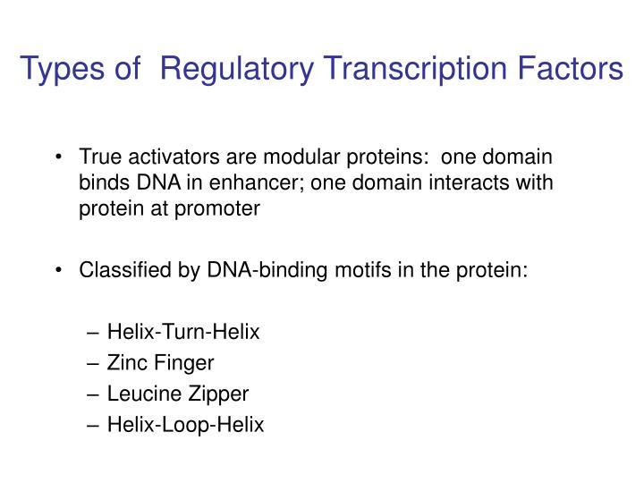 Types of  Regulatory Transcription Factors