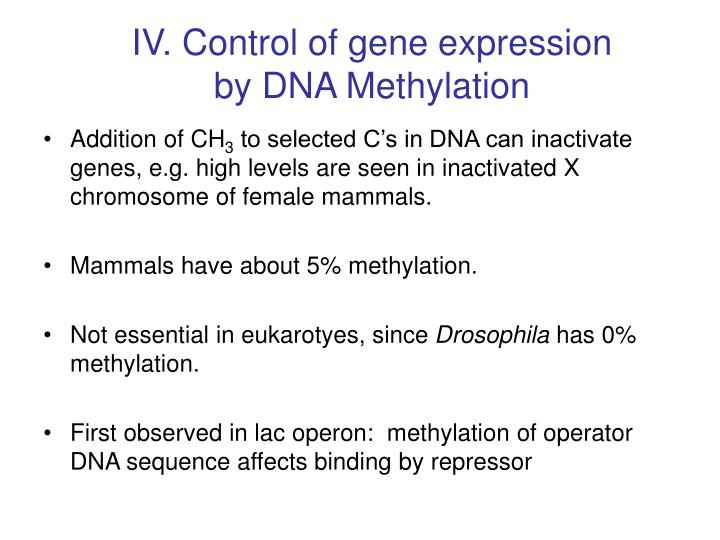 IV. Control of gene expression