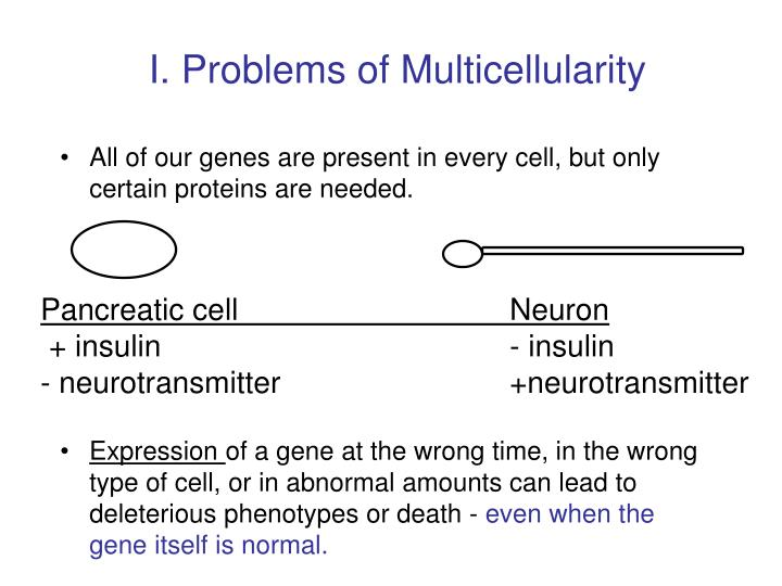 I. Problems of Multicellularity