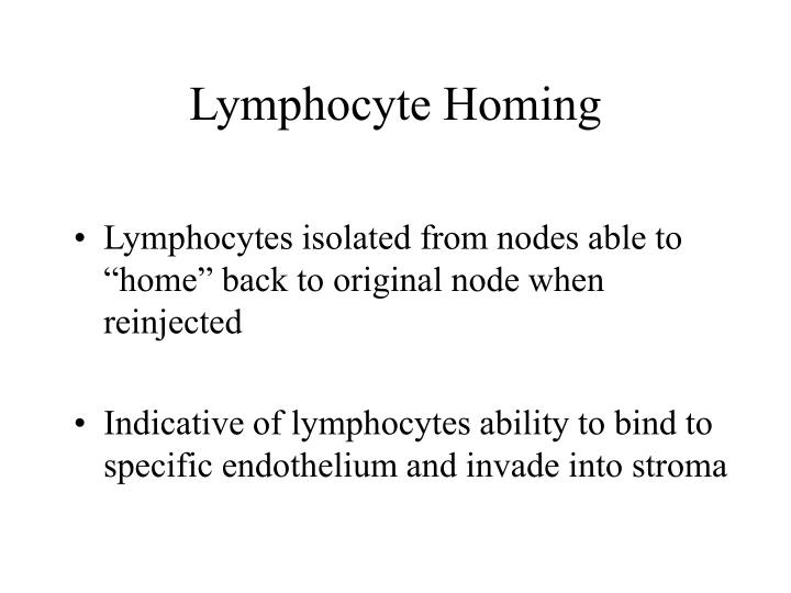 Lymphocyte Homing