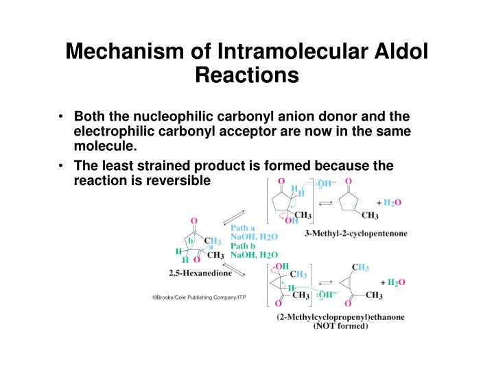 Mechanism of Intramolecular Aldol Reactions