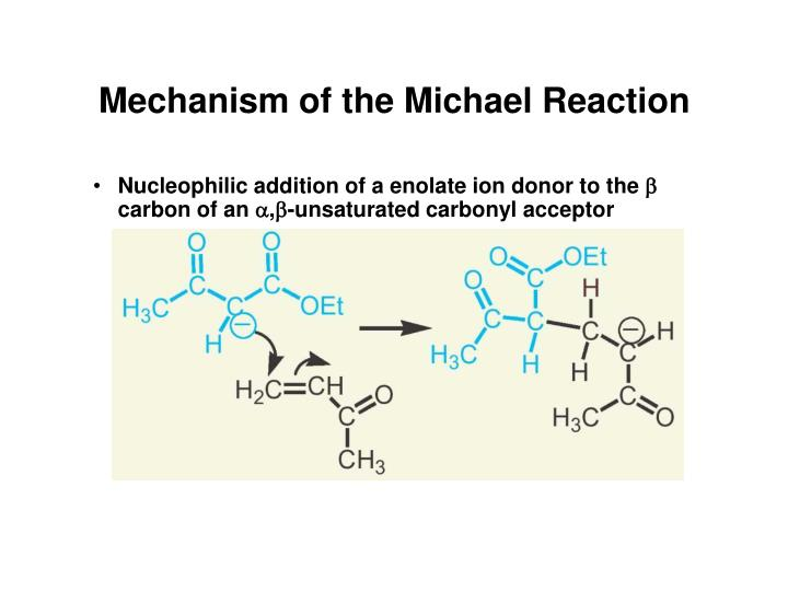 Mechanism of the Michael Reaction