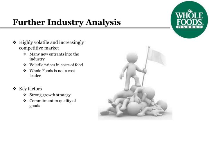 Further Industry Analysis