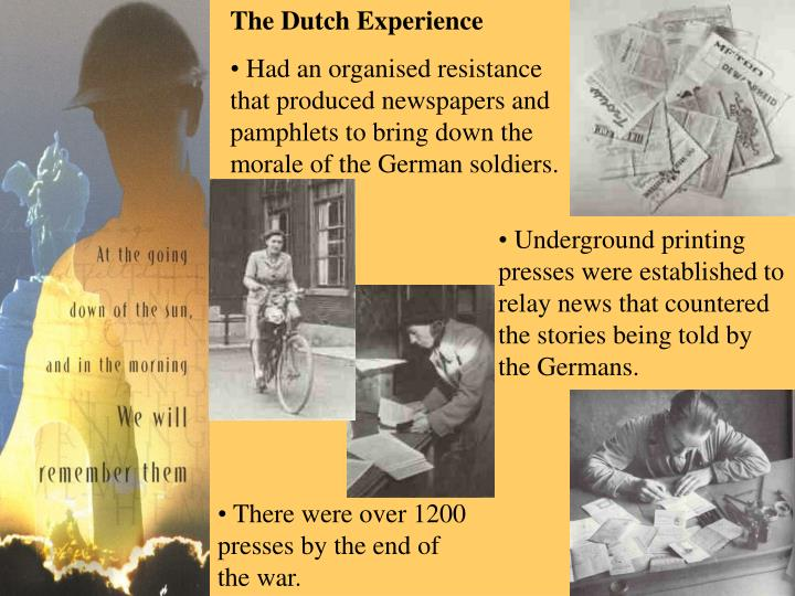 The Dutch Experience
