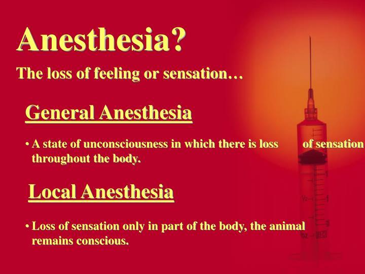 Anesthesia?