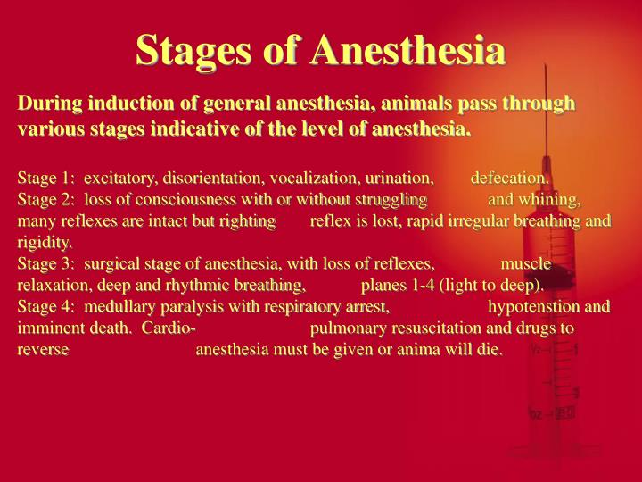 Stages of Anesthesia