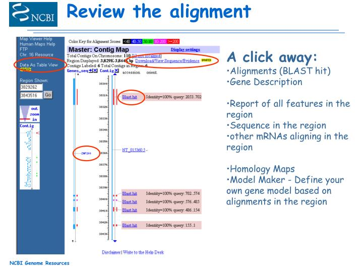 Review the alignment