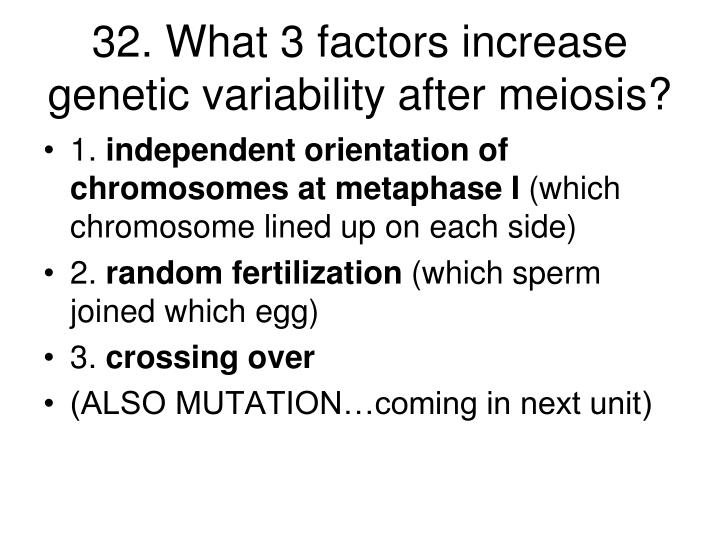 32. What 3 factors increase genetic variability after meiosis?