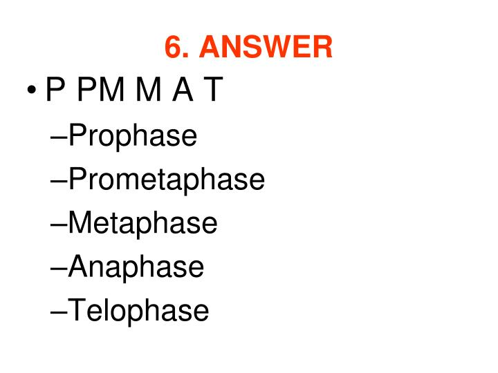 6. ANSWER