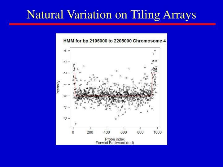Natural Variation on Tiling Arrays