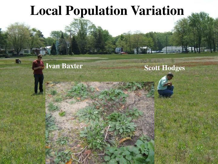 Local Population Variation