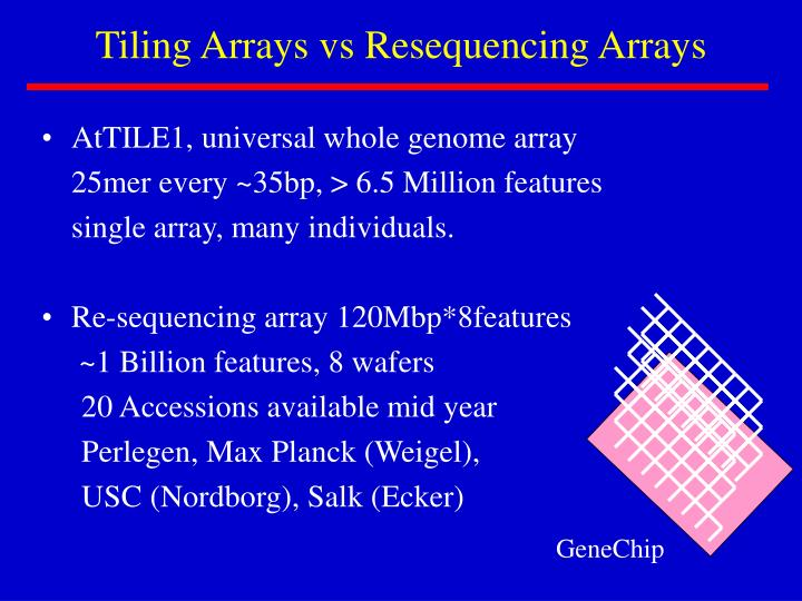 Tiling Arrays vs Resequencing Arrays