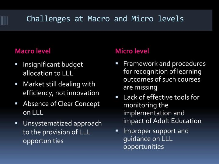 Challenges at Macro and Micro levels