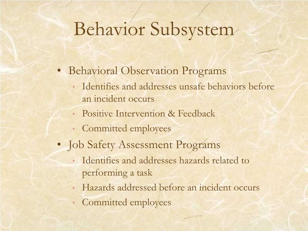 Behavior Subsystem