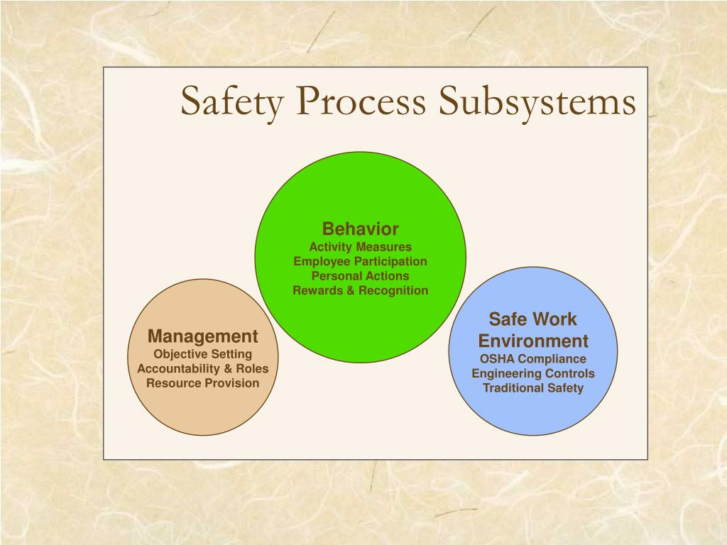 Safety Process Subsystems