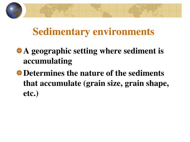 Sedimentary environments
