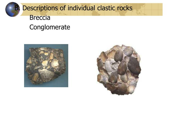 B. Descriptions of individual clastic rocks