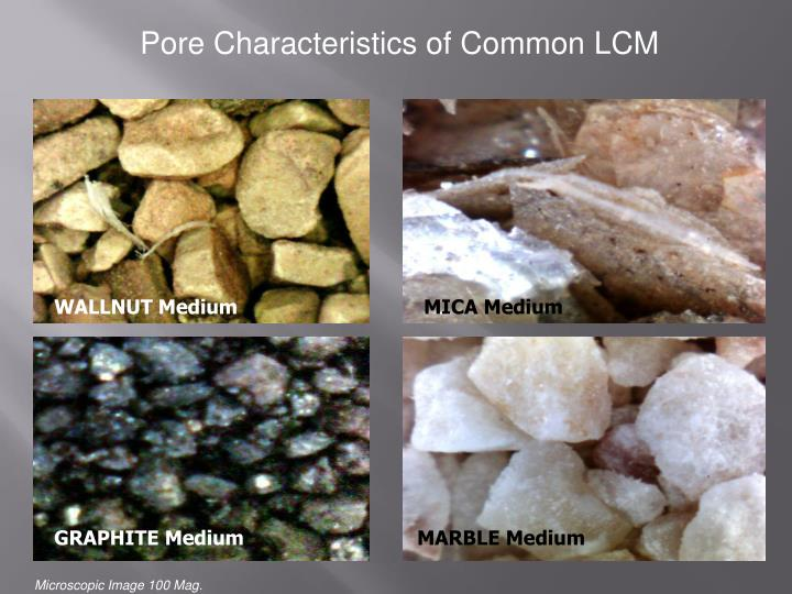 Pore Characteristics of Common LCM