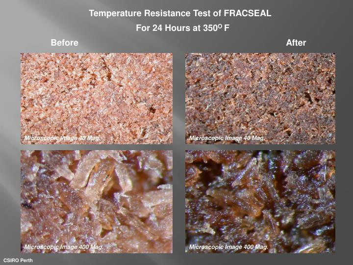 Temperature Resistance Test of FRACSEAL