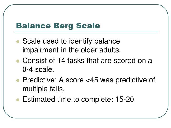 Balance Berg Scale
