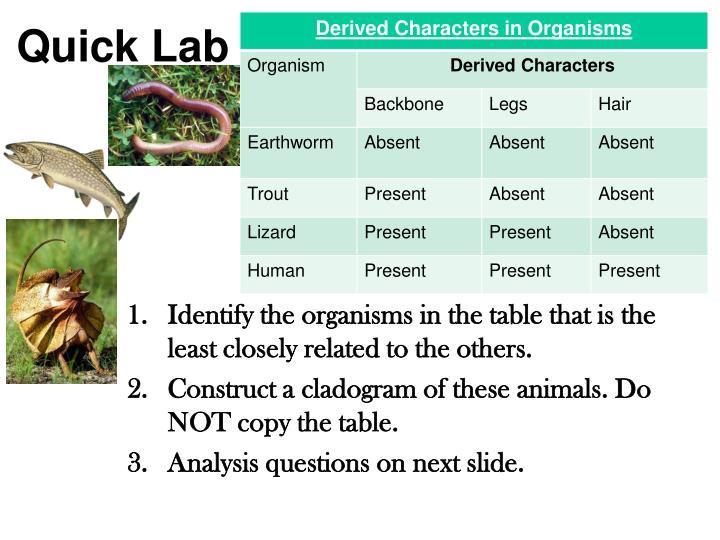 Quick Lab