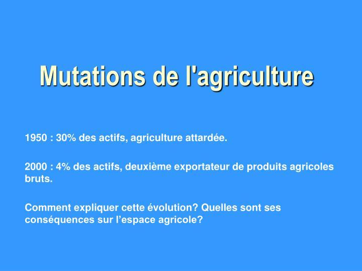 Mutations de l'agriculture