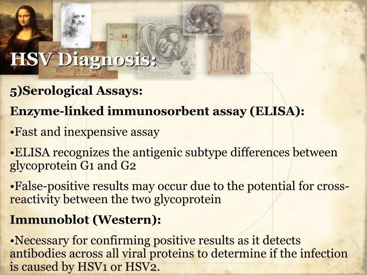 HSV Diagnosis: