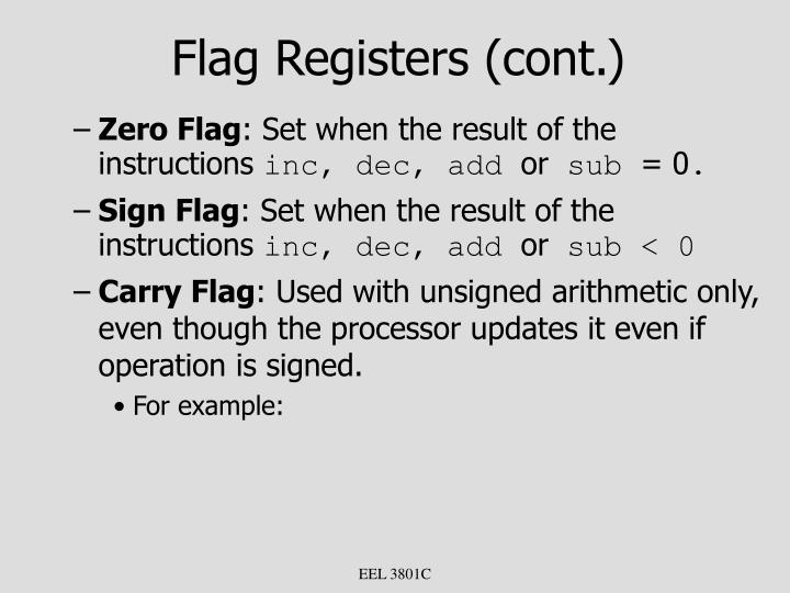 Flag Registers (cont.)