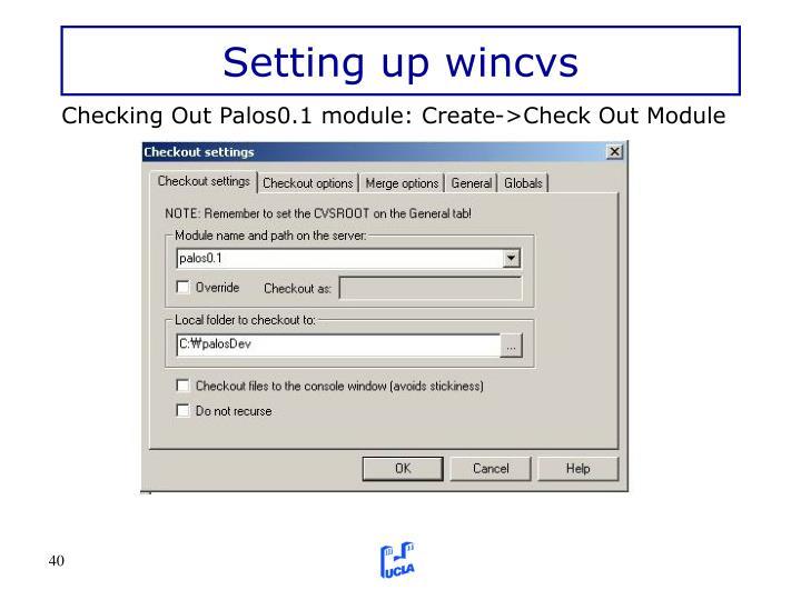 Setting up wincvs