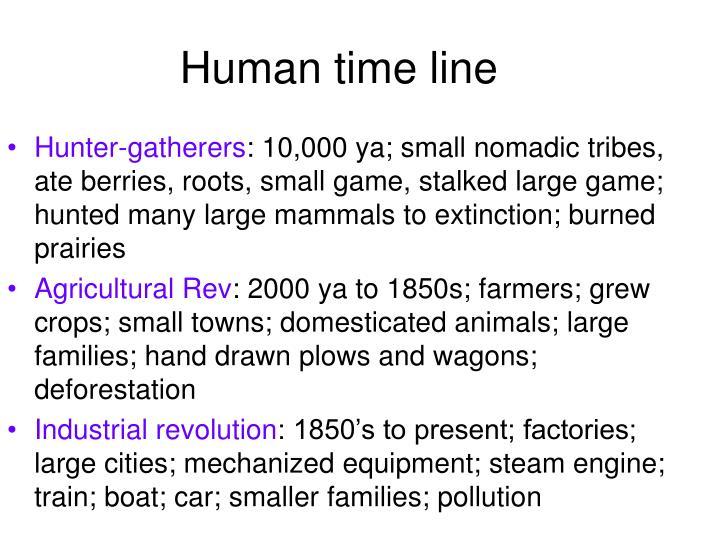 Human time line