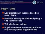puppy cons