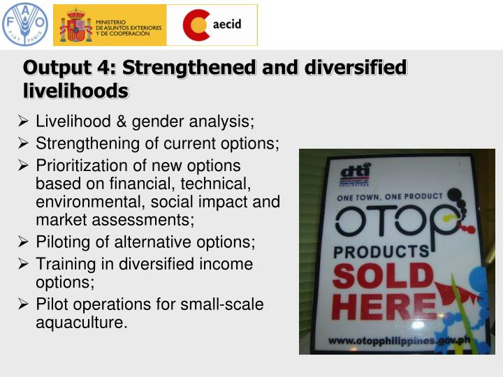 Livelihood & gender analysis;