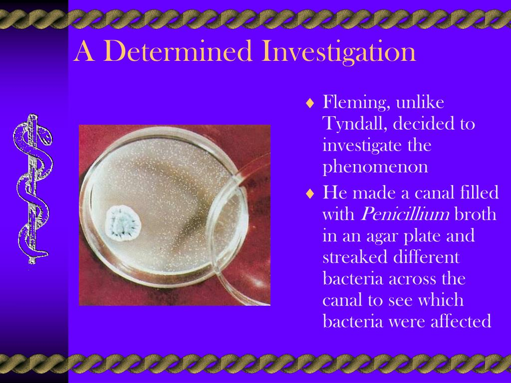 A Determined Investigation