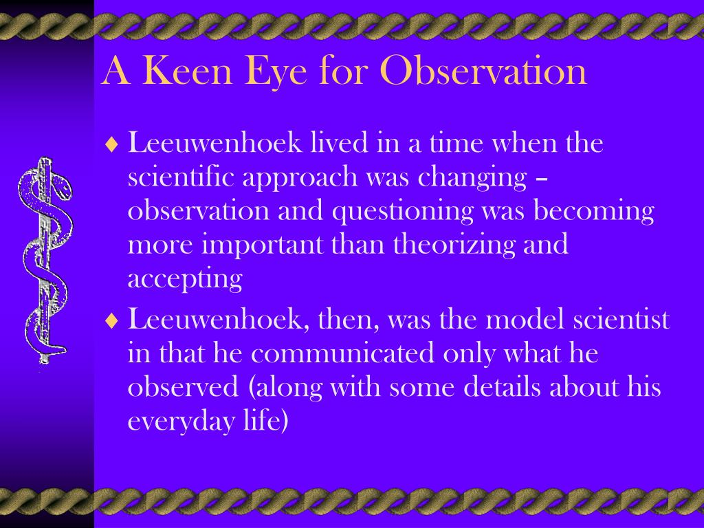 A Keen Eye for Observation