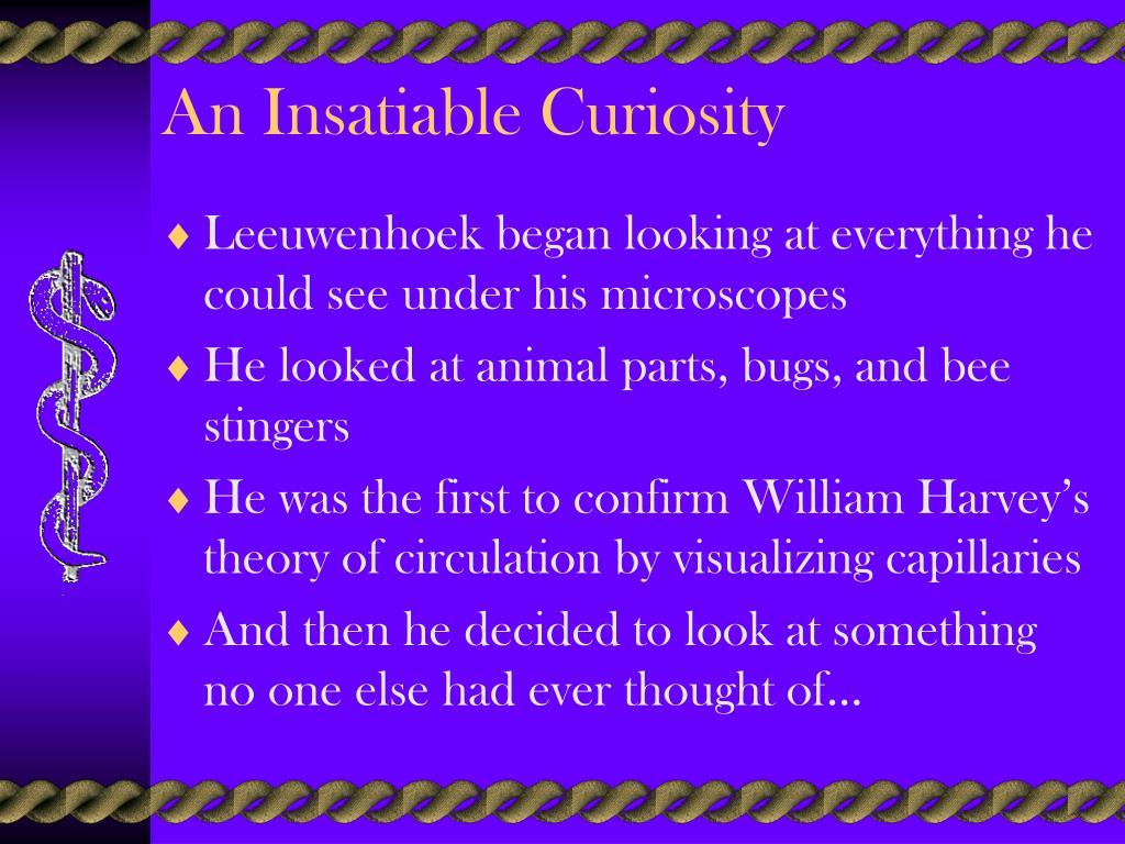 An Insatiable Curiosity