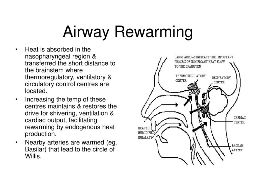 Airway Rewarming