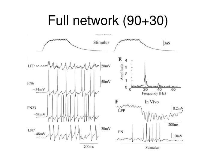 Full network (90+30)