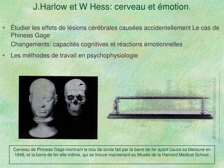 J.Harlow et W Hess: cerveau et émotion