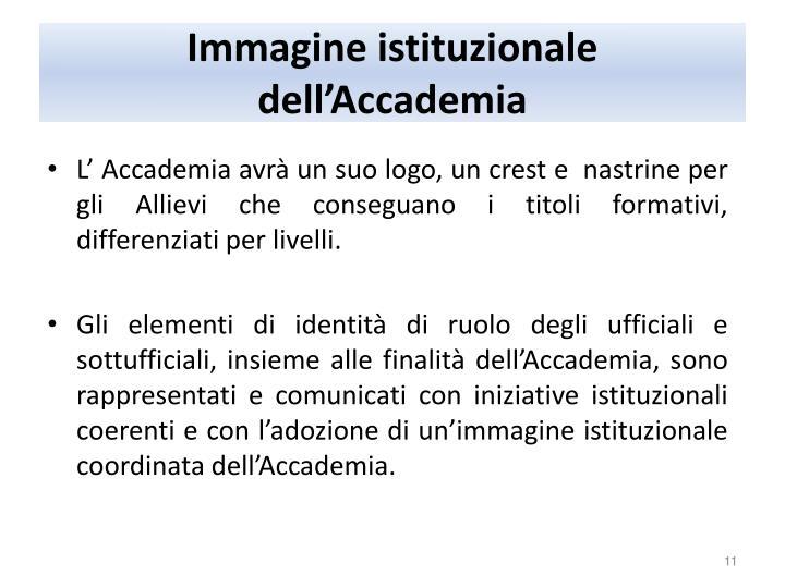 Immagine istituzionale dell'Accademia