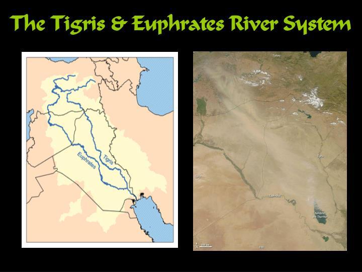 The Tigris &