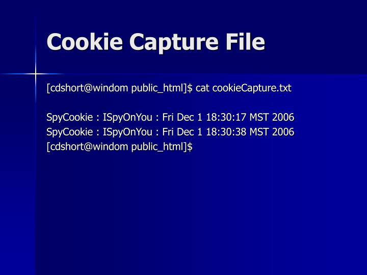 Cookie Capture File