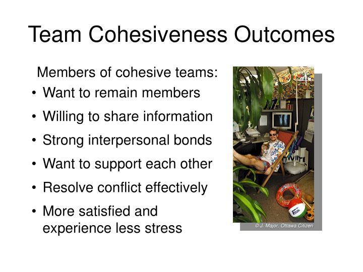 Team Cohesiveness Outcomes