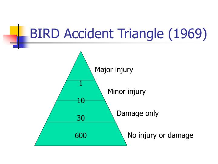 BIRD Accident Triangle (1969)